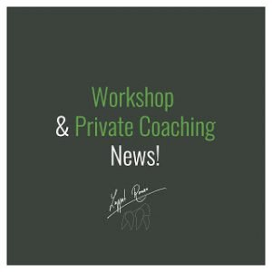 News: Workshop & Private Coaching!